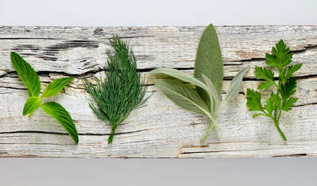 culinary: Garden culinary aromatic herbs on a weathered board, top view