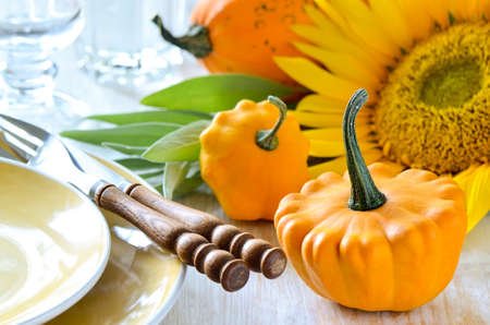 table decorations: Thanksgiving dinner table setting