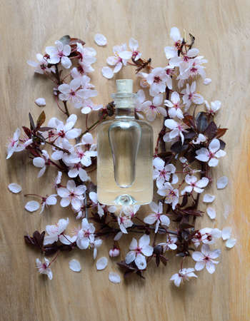 beauty in nature: Natural spa product concept, spa essential oil or lotion in glass bottle, top view