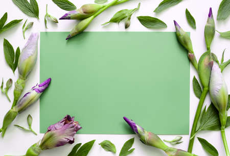 nature photo: Floral background, iris buds, view from above