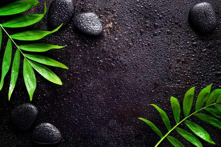 Donkere spa achtergrond, hydraterende concept, palmbladeren en zwarte stenen op een donkere natte sruface, bovenaanzicht