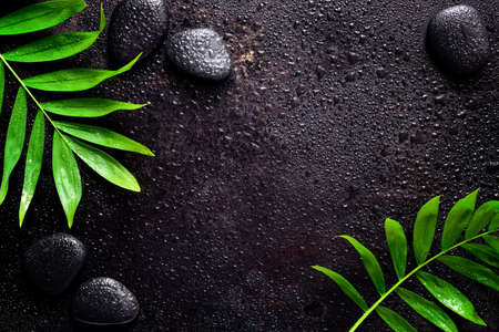 Dark spa background, moisturising concept, palm leaves and black stones on a dark wet sruface, top view Foto de archivo