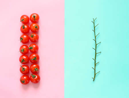 Tomato branch separated from tomatoes, food minimalistic concept, flat lay, view from above photo