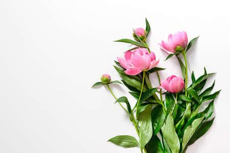 Roze pioenrozen tak op wit, plat lag, lege ruimte voor een tekst