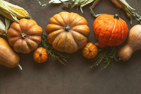 Autumn pumpkin harvest concept or fall background with copy space for a greeting text 写真素材