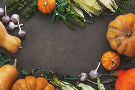 Autumnal rustic culinary pumpkin background with copy space for a greeting text 写真素材
