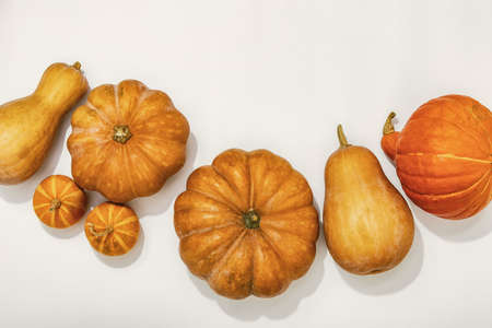 View from above on harvested pumpkins lying down on white background