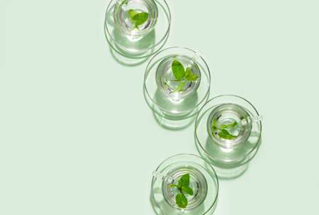 Fresh mint tea in glass tea cups, view from above, blank space for a text