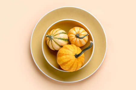 Autumn pumpkin decorative table setting, home decor concept, view from above 写真素材