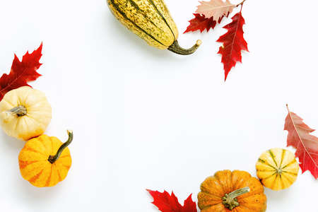 Autumn holidays background with copy space for a greeting text, greeting card or leaflet template with blank space
