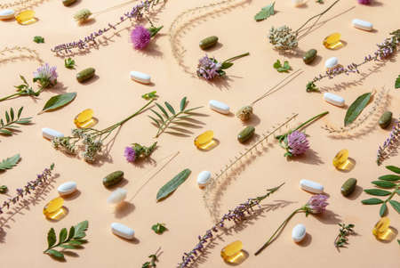 Herbal medicine or natural healing herbs supplements concept 写真素材