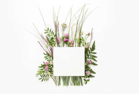 Natural herbs background, summer spa concept or minimalist greeting card template with copy space