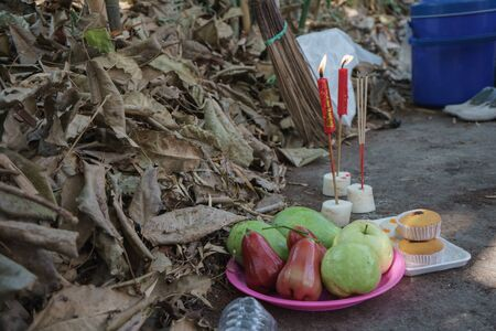 ancestor: Red candle and fruit in ceremony ancestor