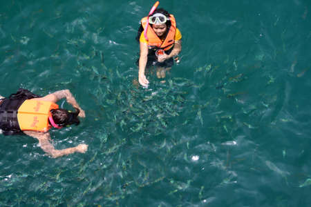 divers feed the fishes in thailand Stock Photo - 1716092