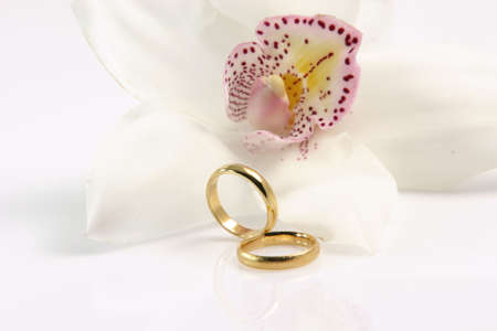 two wedding rings isolated on white with an orchid for background and a little reflection