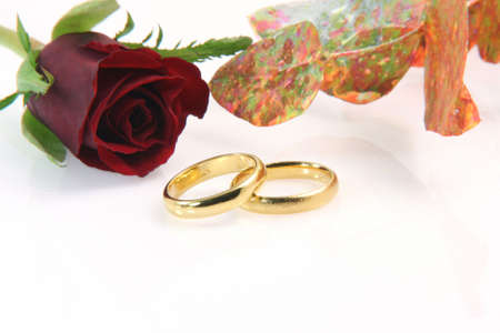 two wedding rings isolated on white with a red rose decoration plant and a little reflection Stock Photo - 2207746