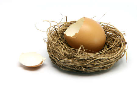 broken egg in nest isolated on white background
