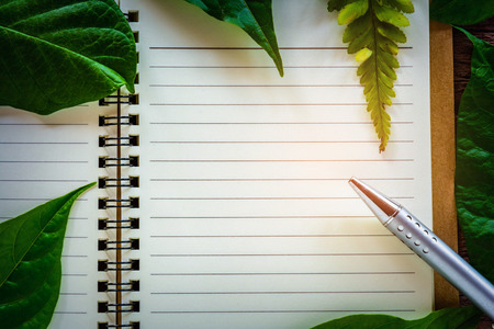 pen and Green leafs on notebook and background wooden