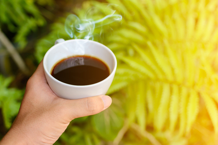 hand on coffee cup clock nature background the good morning