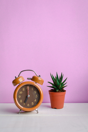 Clock and cactus on the desk with a sweet pink wall