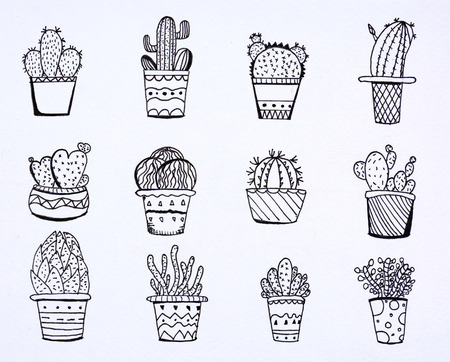doodle cactus desing with llustration drawing paper