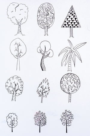 doodle tree sketch design with illustration drawing Stock Photo