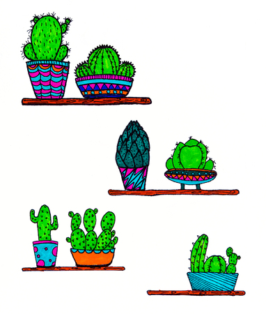 doodle cactus design with illustration drawing paper