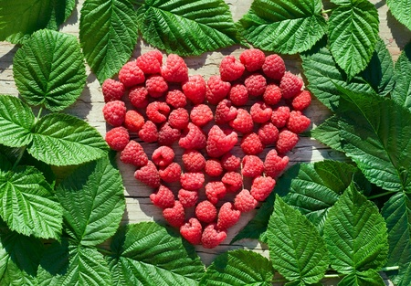 red Raspberry Heart  on green leaves background