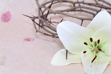 doornenkroon: Kroon van Doornen en Pasen witte lelie op beige achtergrond