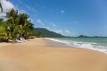 koh: mar y la playa, con la palma de coco en la playa de Lamai en Koh Samui, Tailandia