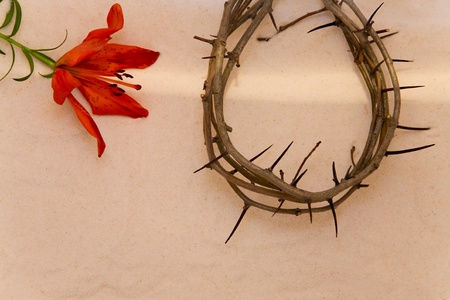 Crown of Thorns and orange Lily on sand background photo