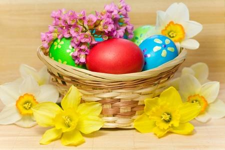 De colores los huevos de Pascua con flor de narciso y por la que se Bergenia en la cesta de la madera Foto de archivo - 12973702