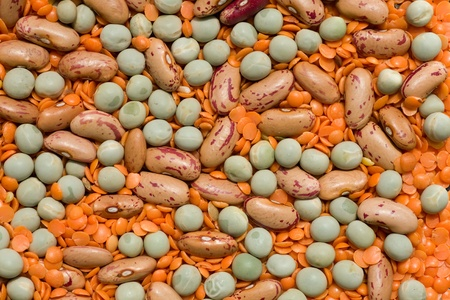 Variety of pulses essential for human life  beans, peas, lentils   photo