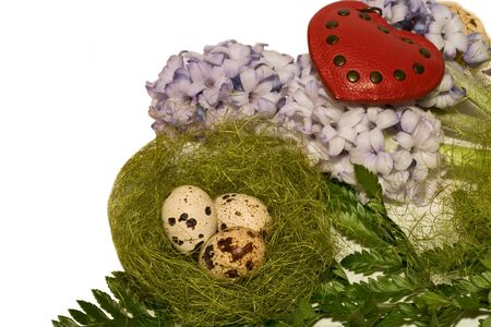 Easter eggs  in nest and blue hyacinth on white backgrownd photo