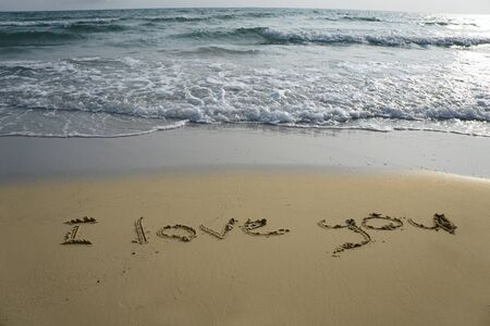 coastlines: Handwriting word I love you written  in the sand Stock Photo