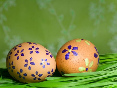 eastertime: Painted Colorful Easter Eggs on green Grass