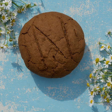 loaf of fresh baked artisan rye and whole grain bread on wooden blue rustic table with summer flower camomile at  sun day.  Outdoors, hard, hardness, light, sunlight. Horizontal flatlay, hard light, deep shadow. Copy space, square Standard-Bild