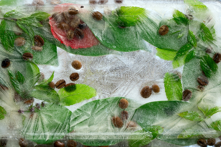 Background of    black  coffee beans  and green leaves of coffee and mint in ice   cube with air bubbles