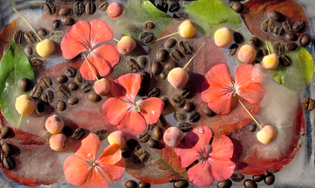 Background of black coffee beans, red small apple, flower of pelargonium and red and green  leave in ice   cube with air bubbles Banco de Imagens
