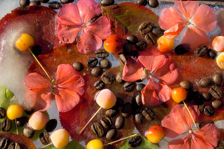 Background of  black coffee beans, red small apple, flower of pelargonium and red and green  leaves in ice   cube with air bubbles Banco de Imagens