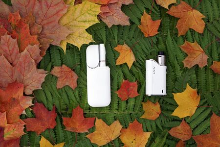White IQOS battery  with  individual sticks, vape  lies on  green leaves of fern and  yellow, red  maple. The concept of  various nicotine delivery systems  Standard-Bild