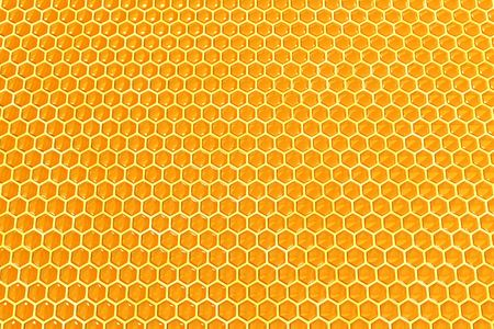 abejas panal: Miel c�lulas textura  Foto de archivo