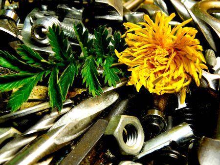 metal: flower metal