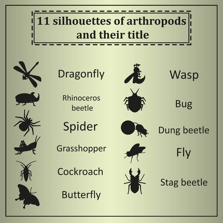 arthropods: set of 11 black silhouettes of arthropods on a yellow background.