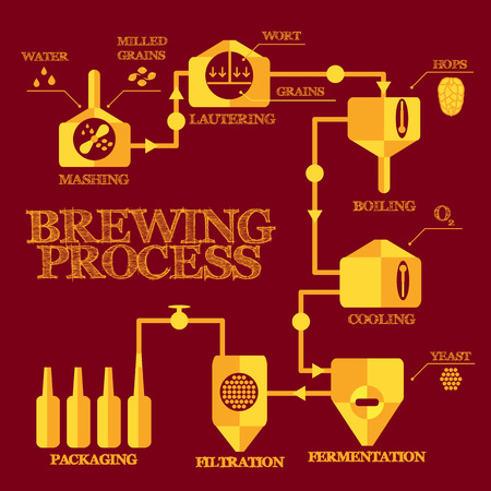Brewery steps. Beer brewing process elements. Mashing, lautering, boiling, cooling, fermentation, filtering, packaging. Alcohol production infographics. Vettoriali