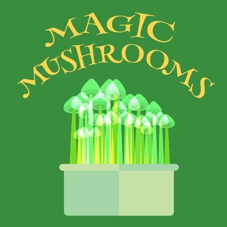 psilocybin: Magic mushrooms grow kit.  Illustration