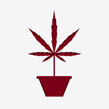 Silhouette of marijuana plant in pot on grey background.