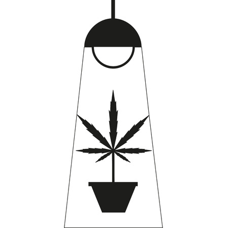 marihuana: La marihuana cuadro de crecer. Dise�o plano. Azul oscuro fondo del icono Vectores