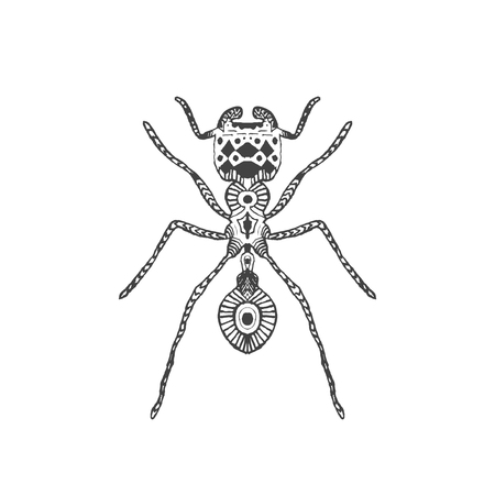 abstract animal: stylized ant. Illustration