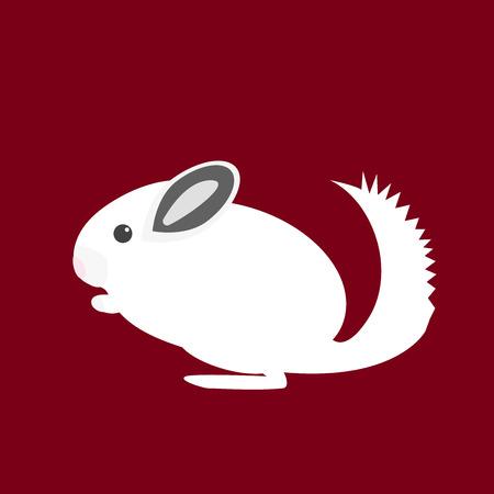 lanigera: Chinchilla. Pet icon in flat style design.